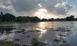 Homem é flagrado extraindo lenha no parque Lagoa Comprida
