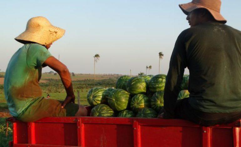 Agricultor familiar tem aumento no limite do crédito fundiário para aquisição de terra