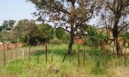 Governo do Estado leiloa nove terrenos avaliados entre R$ 30 mil e R$ 90 mil na Capital