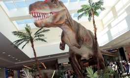 Dinossauros invadem Campo Grande