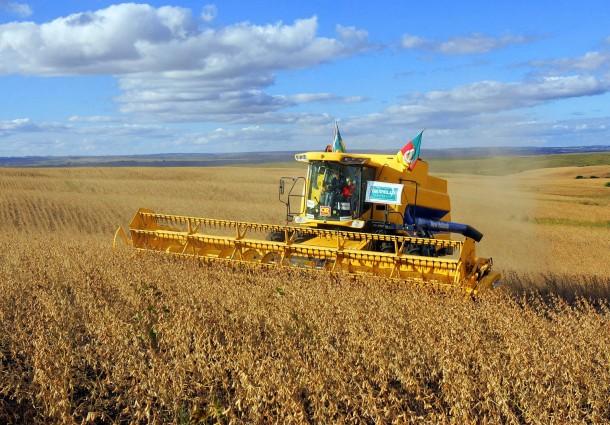 Chuvas prejudicam andamento da safra de grãos no Brasil