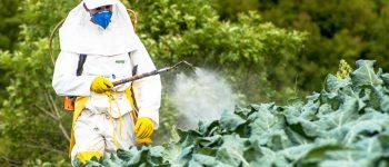 Pesquisadores de MS alertam: há ligação entre uso de agrotóxicos e tentativas de suicídio