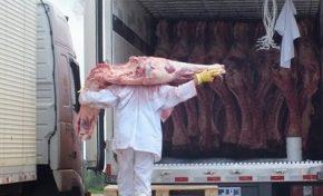 Dupla é flagrada ao tentar furtar carregamento de carne da JBS