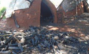 PMA fecha carvoaria ilegal durante fiscalização ambiental