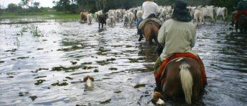 Investimentos do Governo Estadual em infraestrutura mudaram realidade do Pantanal