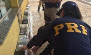 Cocaína pura avaliada em milhões é apreendida pela PRF