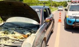 Carro pega fogo e Polícia Militar Rodoviária apreende 43 kg de cocaína em Corumbá