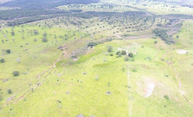 PMA autua fazendeiro em R$ 13 mil por desmatamento ilegal de 44 hectares