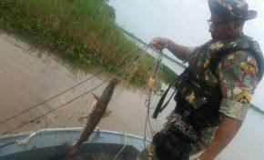 Operação da PMA tem como prioridade o combate à pesca predatória e o tráfico de papagaios