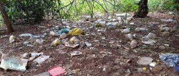 Focos de Dengue: Agentes de Saúde flagram quintais imundos em Aquidauana