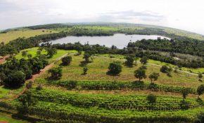 MS ganha mais uma nova reserva particular, que guarda relíquias da fauna e flora regionais