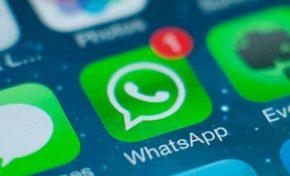 Para combater fake news, WhatsApp limitará criação de grupos e adição de contatos